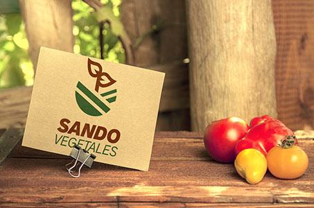 SANDOVEGETALES ®SANDOVEGETALES ® |